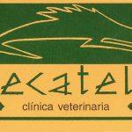 recatelo clinica veterinaria